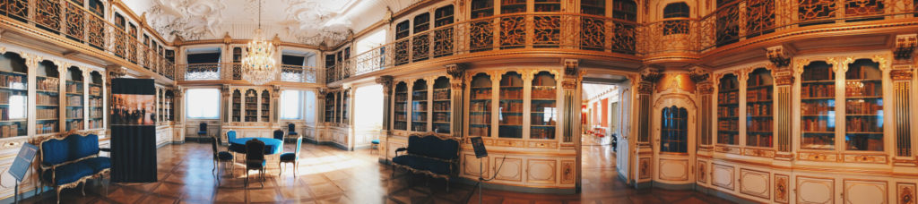 The Queens Library Panorama